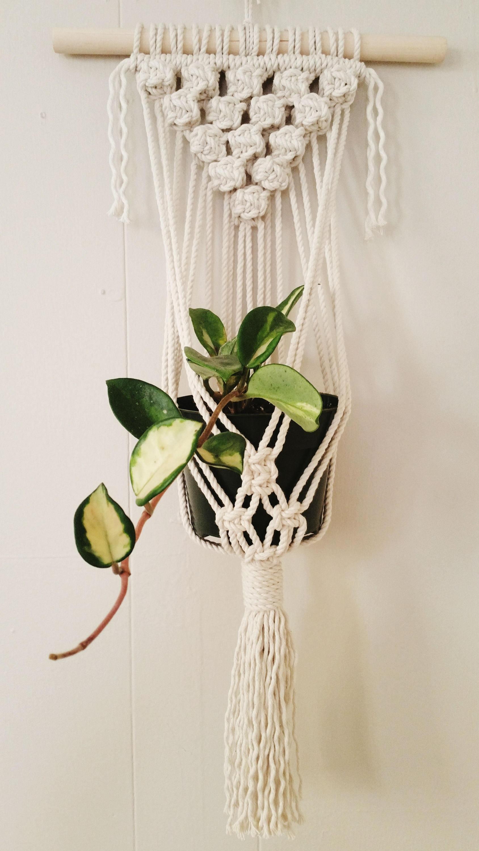 Les plus beaux pots de plante à suspendre