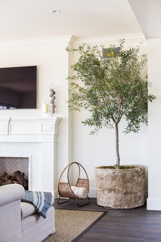 Un arbre dans mon int rieur d co inspiration style classique - Arbre deco interieur ...